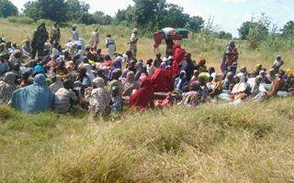 241 women and children were rescued