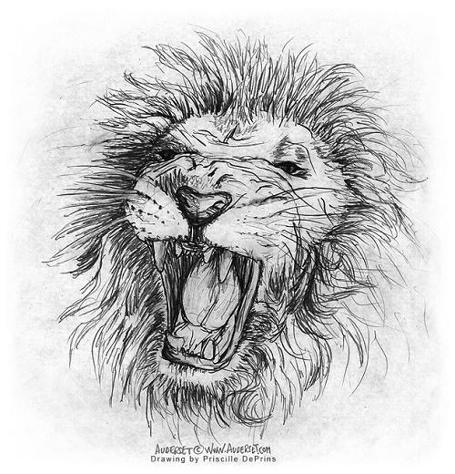 Image: Priscille DePrins,lion, comic