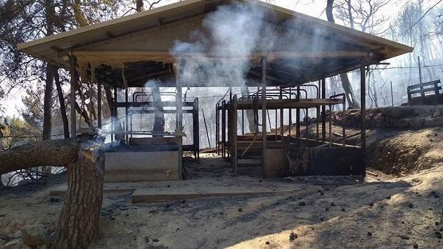 A building of the Kalamos camp, destroyed after the fire. / Kalamos camp,