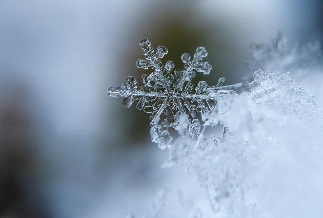 A snowflake. / A. Burden (Unsplash, CC),