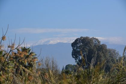 Snow on the Mount Hermon, seen from the north of Galilee. / Photo: Antonio Cruz