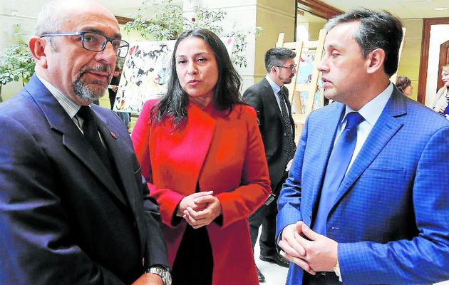 Chilean evangelical MP will meet with education Minister to talk about sexual indoctrination in schools. / La Tercera.,