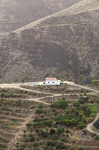 A region near Marbella, in Andalucía (Spain). / Victor Grabarczyk (Unsplash, CC0)
