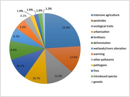 Main factors associated with insect declines. / Science Direct.