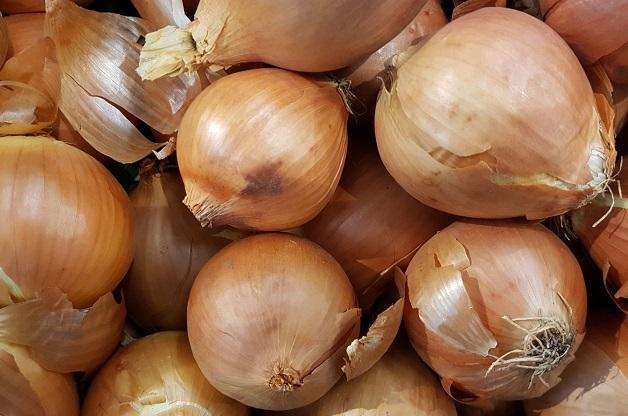Onions. / Photo: Antonio Cruz,