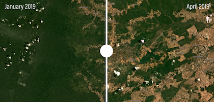 The plateuau of Roraima, after the fires in the zones. / Global Forest Watch Fires