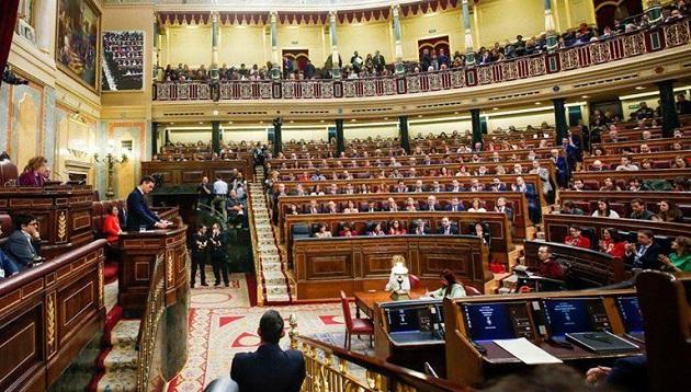 Candidate Pedro Sánchez addresses the Spanish Parliament, January 2019. / Facebook Congreso de los Diputados,