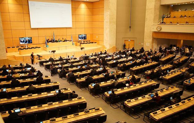 United Nations Human Rights Council . / @UN_HRC,