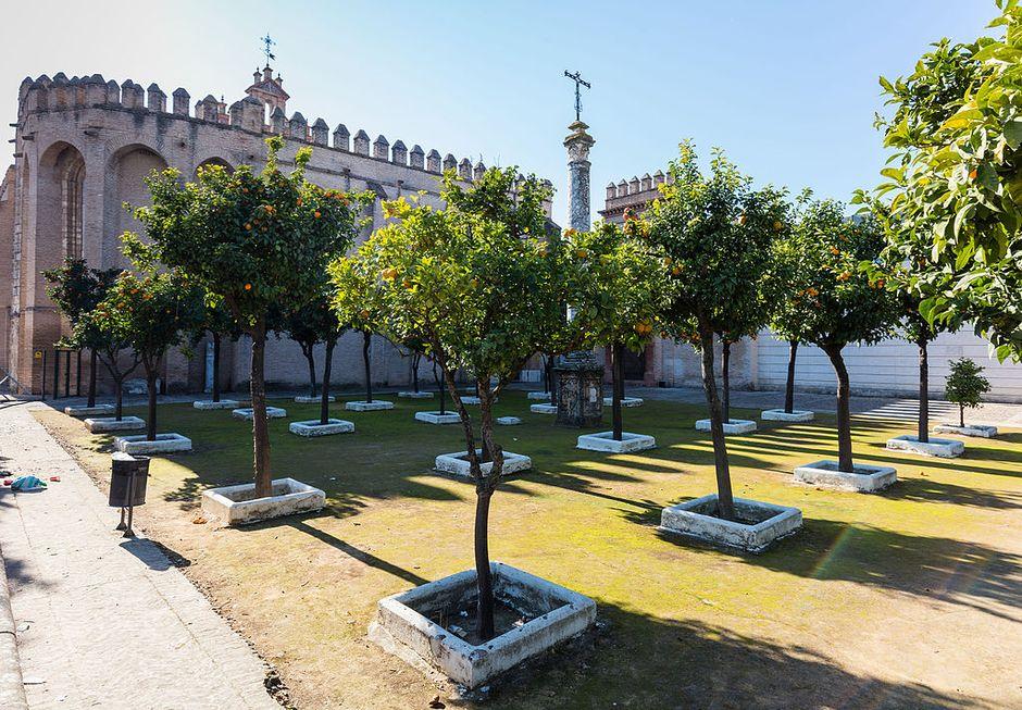 "Entrance ofthe monastery of San Isidoro del Campo in Seville. / <a target=""_blank"" href=""https://es.wikipedia.org/wiki/Monasterio_de_San_Isidoro_del_Campo#/media/Archivo:Monasterio_de_San_Isidoro_del_Campo,_Santiponce,_Sevilla,_Espa%C3%B1a,_2015-12-06,_DD_65.JPG"">Diedo Delso, Wikipedia CC</a>,"